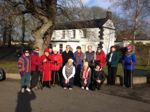 arthritis ireland walking groups